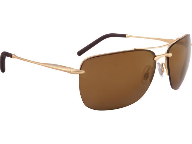 Alpina Cluu Cykelbriller guld | Glasses